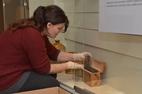 Zonnebeke: Memorial Museum Passchendaele 1917 stelt vernieuwigingen 2020 voor - 29/01