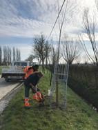 Start aanplanting frontbomen